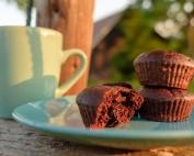 CHOCOLATE - COCONUT - SEA SALT SIMPLE VEGAN CUPCAKES