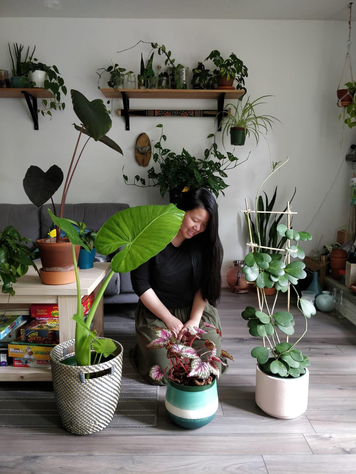 Jackie Tsang Homebyfaith MARPHYL ambassador home houseplants
