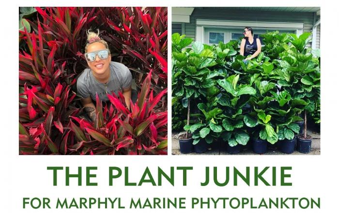 Izabela the plant junkie_ interview for marphyl marine phytoplankton