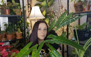 Nicki from Plants pots and whatnots wirh Philodendron Billietiae