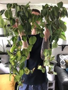 Jesse_plantfilledapartment_marphyl_experiment_RESULT