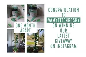 CONGRATULATIONS ON WINNING OUR LATEST INSTAGRAM GIVEAWAY