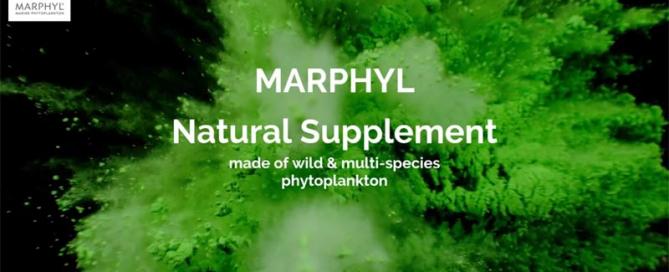 MARPHYL_supplement_video_thumbnail_small
